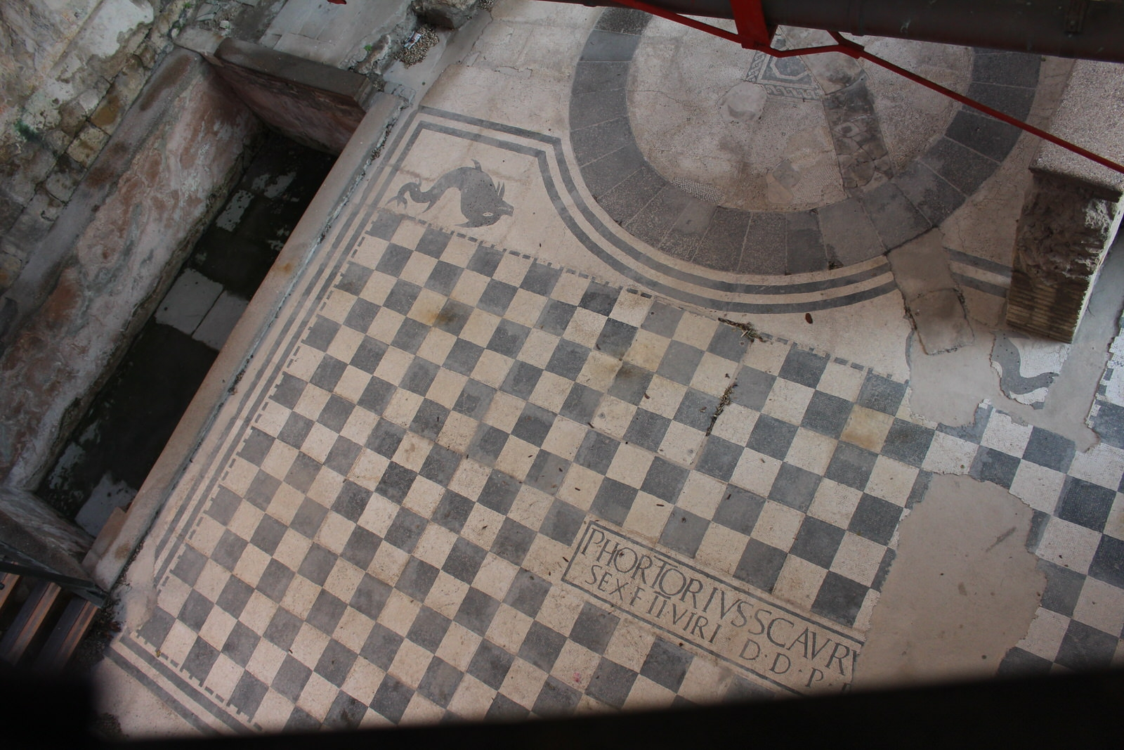 Ancona Mosaici anfiteatro